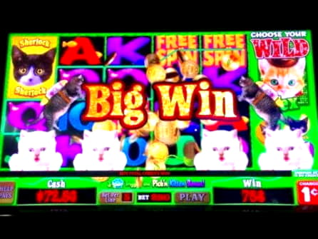 €675 Free Chip Casino at Royal Dubai Casino